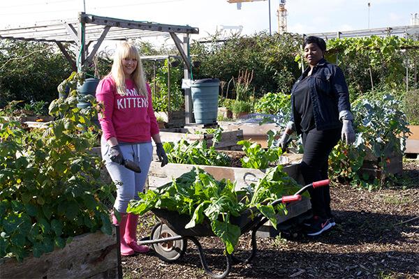 Community Garden U003e